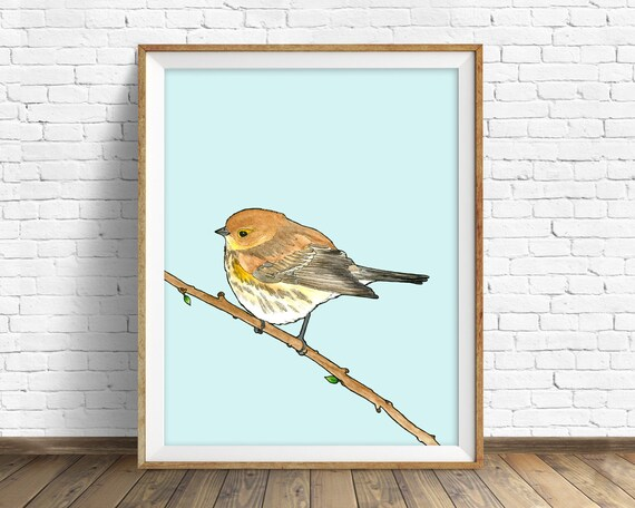 Yellow Rumped Warbler - bird, drawing, watercolor, yellow, blue, art print, wall art print, large wall art, animal art print, woodland, art