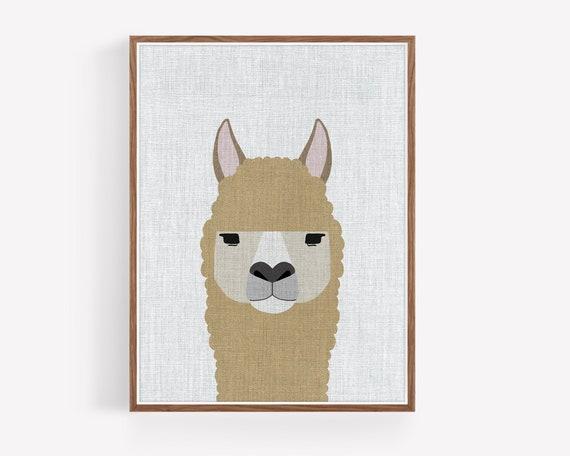 """ Modern Alpaca"""
