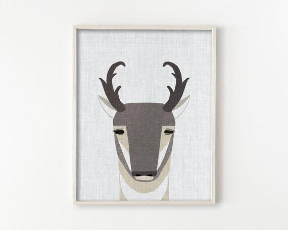 Pronghorn Antelope - Modern Animals Series