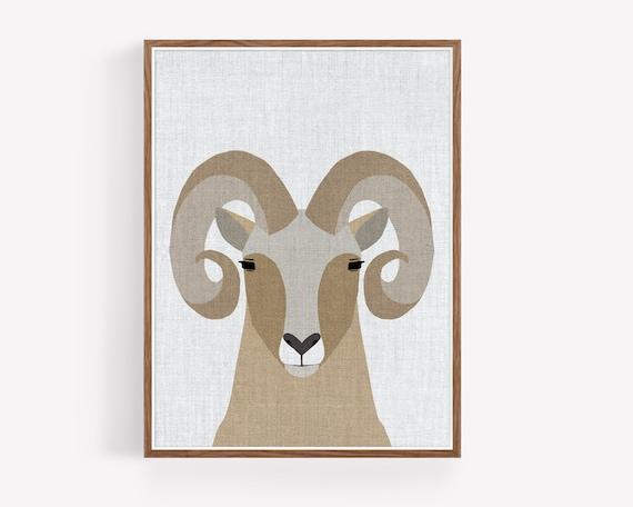 """""""Modern Bighorn Sheep"""""""