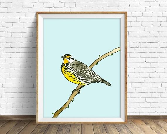Meadowlark - bird, drawing, watercolor, bird print, blue, art print, wall art print, large wall art, animal art print, woodland wall art
