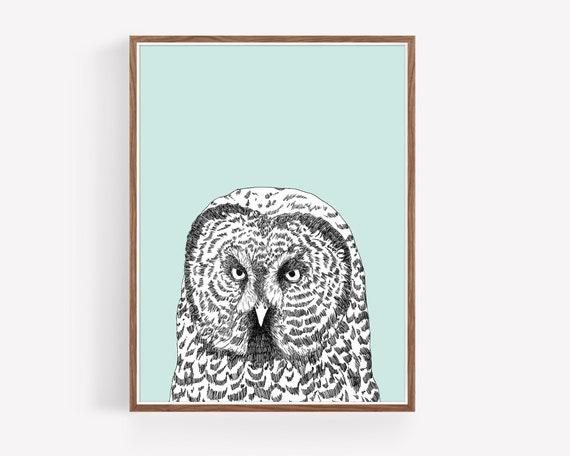 """Gray Owl"""