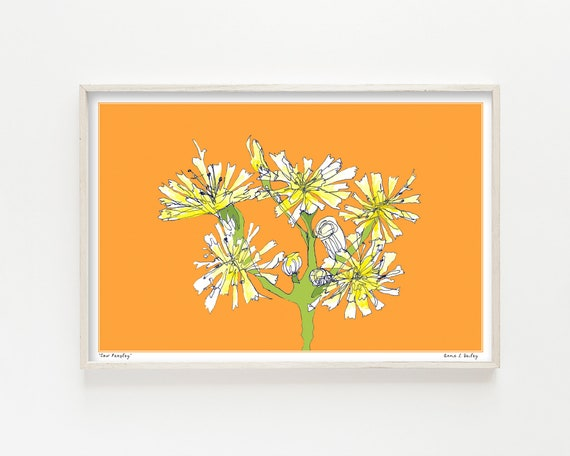 """Cow Parsley"" - wall art print"