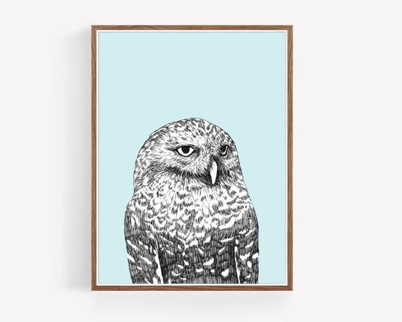 """Snowy Owl"""