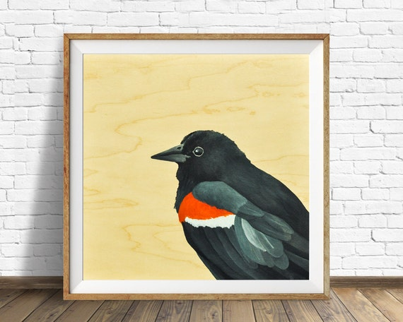 red winged blackbird, blackbird, nature prints, wood grain, wood wall art, nursery wall art, nursery decor, woodland nursery, wall art, art