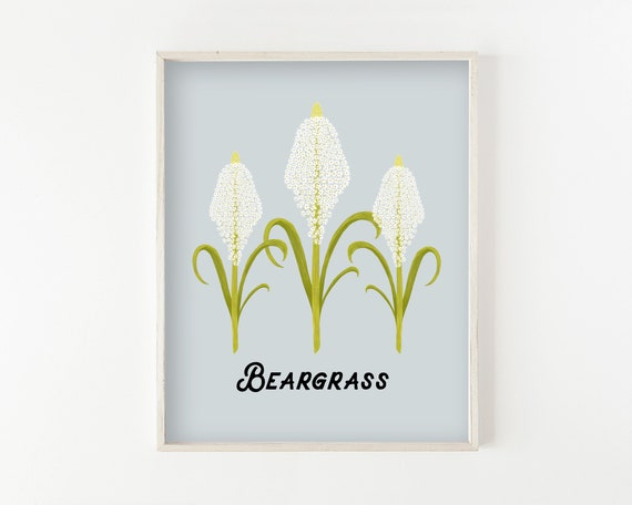 Beargrass - fine art print