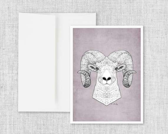 Bighorn Portrait - Greeting Card and Envelope