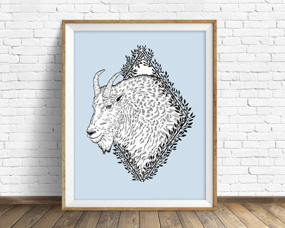 Rocky Mountain Goat - art print