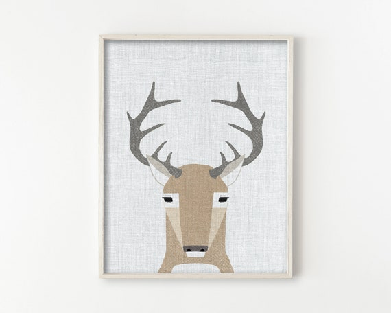 White Tail Deer