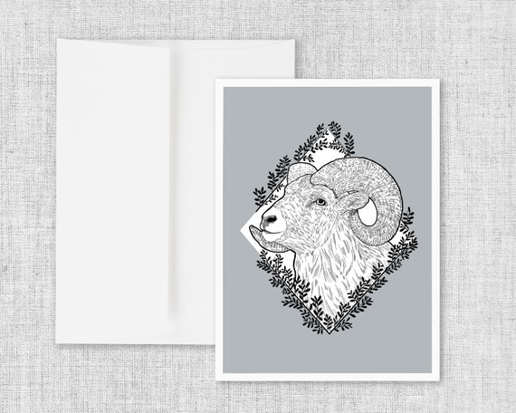 Rocky Mountain Bighorn - Greeting Card and Envelope