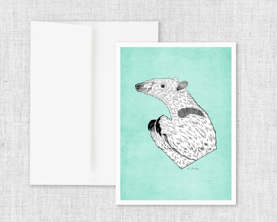 Anteater - Greeting Card and Envelope