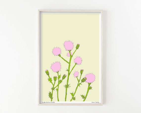 """Pink Thistle Patch"" - wall art print"