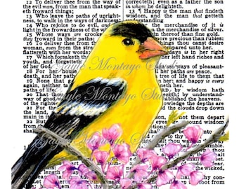 Watercolor on Bible Page AMERICAN Goldfinch© Wisdom  Promises Godliness Happy Gain Of Wisdom 4x6, 5x7, or 8x10 Instant Digital Download -JPG