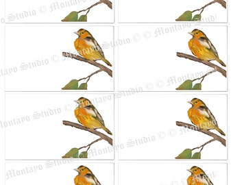 ORIOLE  INSTANT Digital Download  Collection of original art prints for  gift Tags