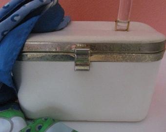 Cute Ivory Box Purse Clear Lucite Handle JR Florida Sky Blue Green Landscape Nylon Scarf