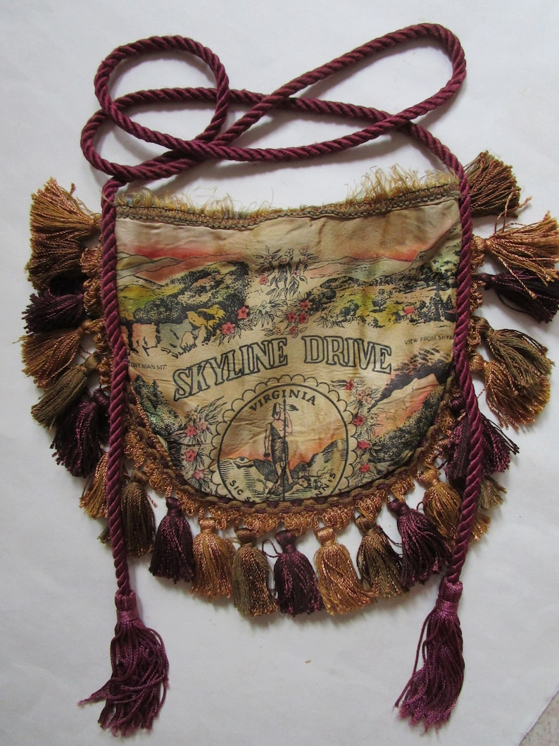 OOAK Skyline Drive Virginia Purse Bag Satin Tourist Pillow image 0