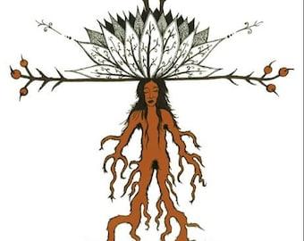 Mandrake, A Greeting Card