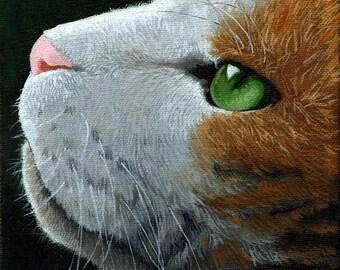 CAT FACE  animal portrait art print from original oil painting