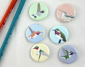 Hummingbird Pins | Pack of 6 | nature songbird audubon birder wildlife stocking stuffer button badge birdwatcher