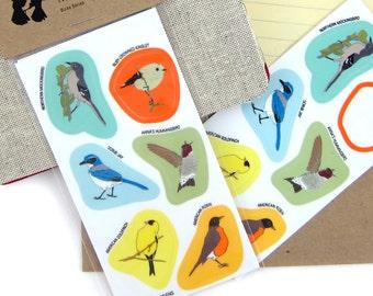 Western Backyard Bird Stickers   Waterproof Vinyl   2 sheets of 6   songbird nature wildlife birder outdoors audubon colorful decal