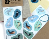 Waterbird Stickers | Waterproof Vinyl | 2 sheets of 6 | wetlands nature wildlife birder outdoors audubon colorful decal