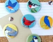 Eastern Backyard Bird Pins | Pack of 6 | nature songbird audubon birder wildlife stocking stuffer button badge birdwatcher