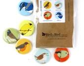 Western Backyard Bird Pins | Pack of 6 | nature cute robin birder songbird wildlife stocking stuffer button badge birdwatcher