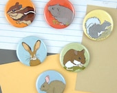 Little Critter Magnets | Boxed Set of 6 | woodland animals outdoorsy rodents mammals forest friends original illustrations