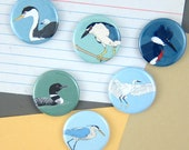 Waterbird Magnets | Boxed Set of 6 | wetlands nature outdoors birder waterfowl wildlife stocking stuffer fridge magnet birdwatcher