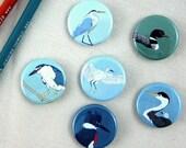 Waterbird Pins | Pack of 6 | nature outdoors birder wetlands wildlife stocking stuffer button badge birdwatcher