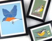 Wild Bird Prints | 5x7 Inches | Original Artwork: Choose from 30+ Modern, Colorful Designs |
