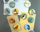 6 Wildlife Magnets: Choose your Designs! | 87 Different Birds and Animals | outdoors nature birder biology stocking stuffer cute critters