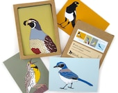 Box of Grasslands Birds Note Cards | 2 Each of 4 Designs | Printed on Recycled Paper | blank bird greeting quail california outdoors nature