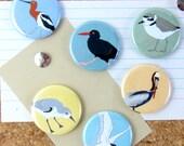 Shorebird Pins | Pack of 6 | nature ocean birder beach shore wildlife stocking stuffer button badge birdwatcher