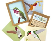 Box of Hummingbird Note Cards | 2 Each of 4 Designs | Printed on Recycled Paper | blank cute bird greeting outdoors nature
