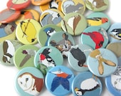 6 Pack of Wild Bird + Animal Pins | Choose from 87 Designs! | Party Favors| nature gift wildlife outdoors songbird original illustrations