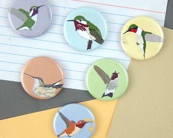 Hummingbird Magnets   Boxed Set of 6   nature outdoors bird of cute birder wildlife stocking stuffer fridge magnet birdwatcher