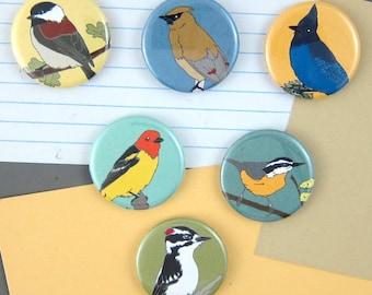 Woodland Bird Magnets   Boxed Set of 6   wild birds forest birds birder gift wildlife art nature lover cute songbird