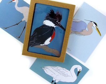 Box of Wetlands Birds Note Cards   2 Each of 4 Designs   Printed on Recycled Paper   blank bird greeting quail california outdoors nature