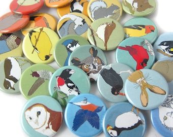 Mix and Match Wild Bird + Animal Pins   Choose from 89 Designs   Party Favors  nature gift wildlife outdoors songbird original illustrations