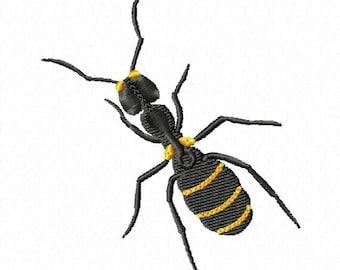 ant 161