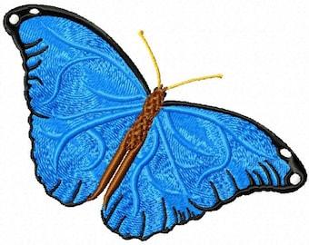morpho butterfly 202