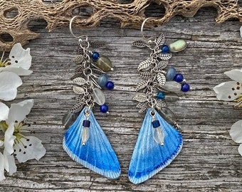 Butterfly wing leather earrings with rainbow moonstone and blue kyanite. Mixed media dangle earrings w/ gemstones & sterling silver. hooks.