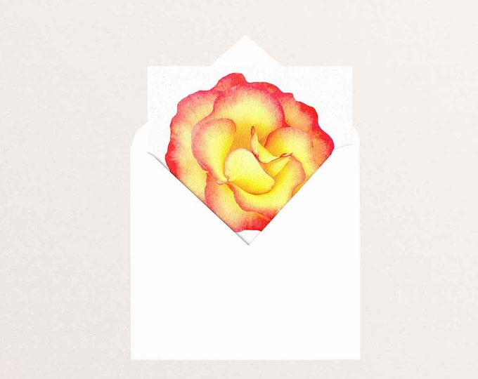 Yellow rose square greeting card