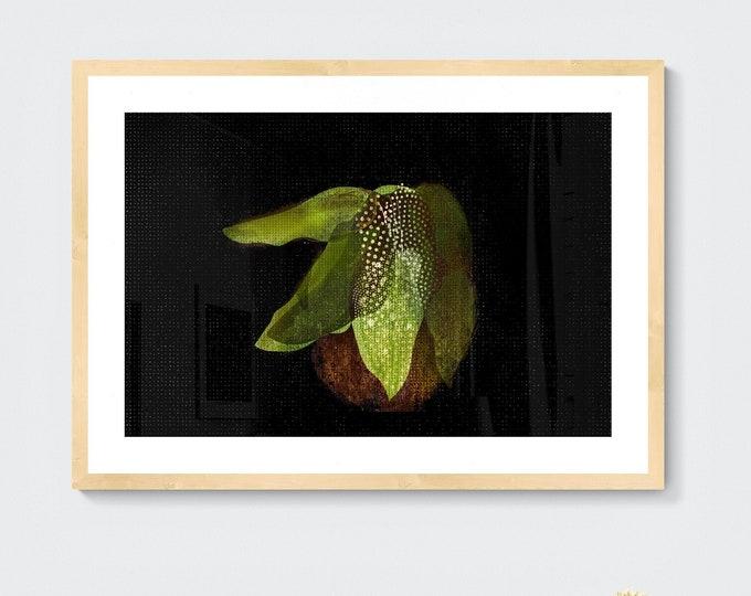 Polka dot begonia framed art print