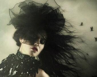 Vintage Vamp ~ Black Grimoire Fascinator Headdress by Kambriel - Sophisticated Femme Fatale Glamour