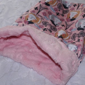 12x15 Guinea Pigs Snuggle Sack Whimsical Piggy Print with coordinating Minky fur lining Pouch for Guinea Pigs