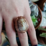 Electroformed Cowerie Shell Ring/Witches Rings/Hoodoo Rings/Money Shells/Copper Shell Ring#Huge Rings/Brown Cowrie/Unique/Electroplated Ring