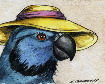 The Newton's Parakeet ~~ No 95 of 100 series- ~ signed watercolor print