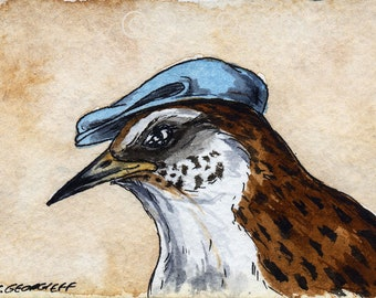 The Chatham Island Fernbird ~~ No 94 of 100 series- ~ signed watercolor print